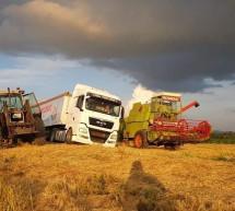 Žetva pšenice na vakufskim parcelama u Janji