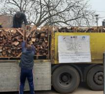 Podjela ogrjevnog drveta za 13 porodica u Janji